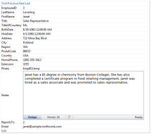 WebTextEditor used as item template