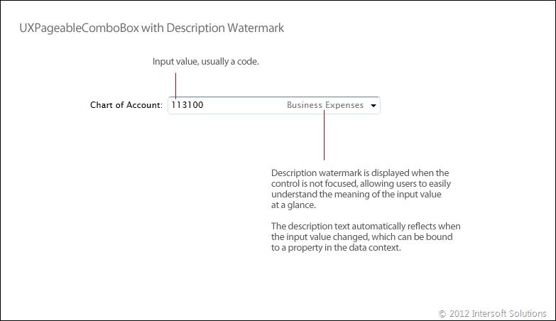 Unique description watermark feature for code-description input