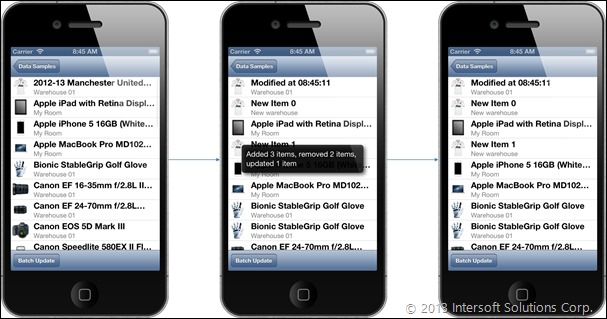 Universal Data Management on iPhone